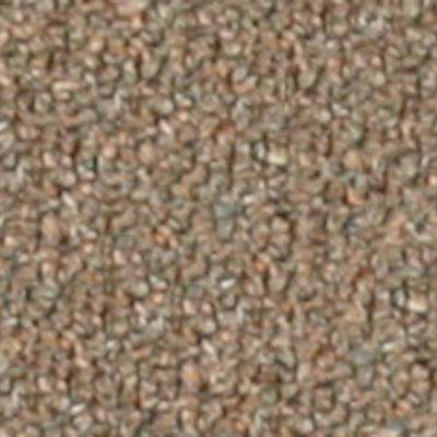 Carpet Sample - Bottom Line Base - In Color Country Tweed 8 in. x 8 in.