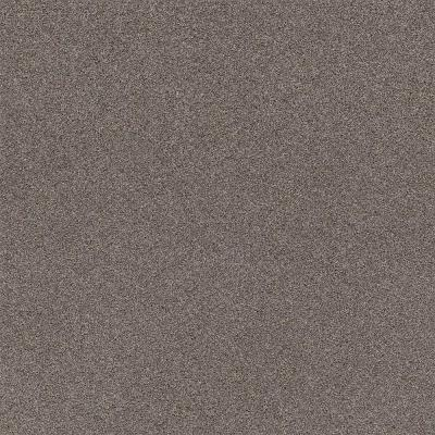 Wholehearted II - Color Shark Fin Twist 12 ft. Carpet