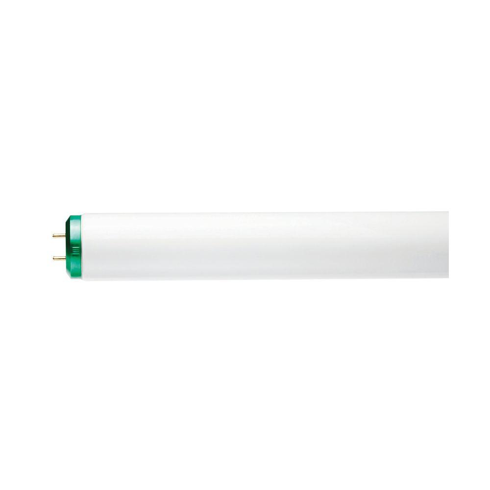 Sunlite F20T12//CW 20-Watt T12 Linear Fluorescent Light Bulb Medium Bi Pin Base 30-Pack Sunshine Lighting Cool White