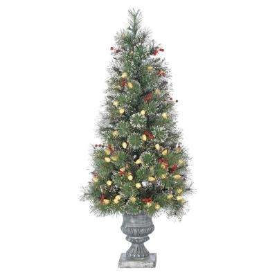 4 ft. Pre-Lit LED Potted Alaskan Fir Artificial Christmas Tree with Frosted Hard Needles and Berries