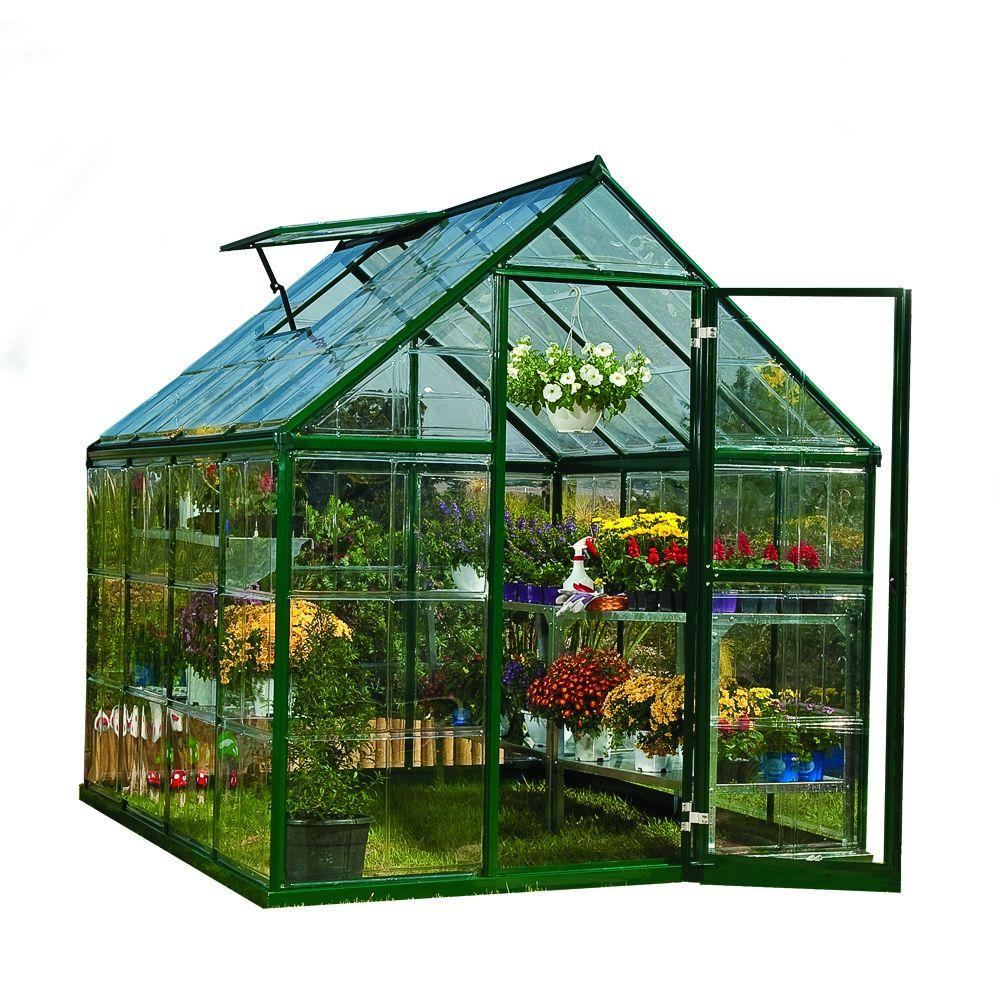 Palram harmony 6 ft x 8 ft polycarbonate greenhouse in for Green ideas for houses