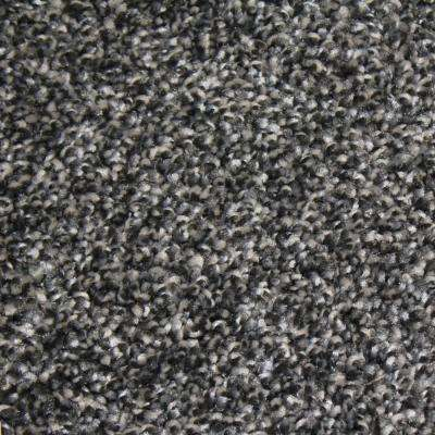 Carpet Sample - Shackelford I - Color Top Quality Texture 8 in. x 8 in.