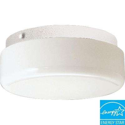 White fluorescent outdoor ceiling lighting outdoor lighting hard nox collection 2 light outdoor white flushmount aloadofball Image collections