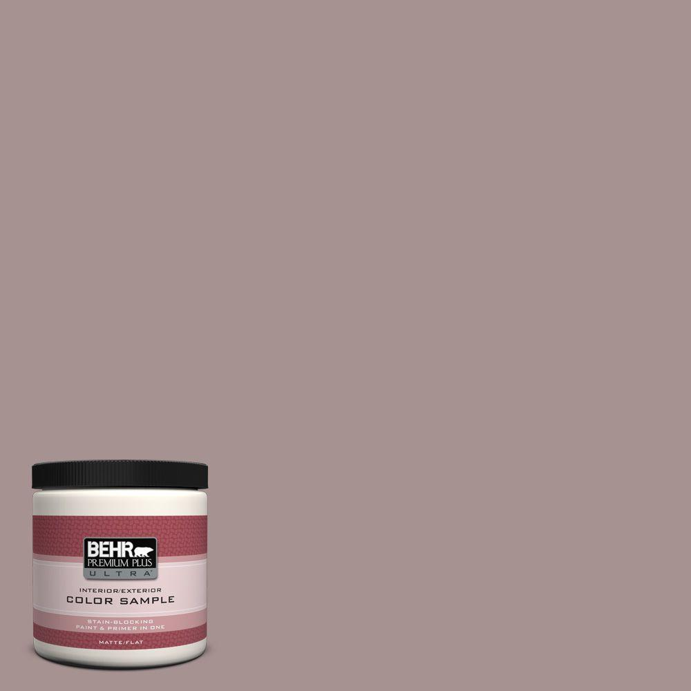 4529f36807 #740B-4 Suede Leather Matte Interior/Exterior Paint and Primer in One Sample