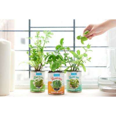 Basil/Cilantro/Mint Kitchen Herb Garden Variety (3-Pack)