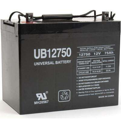 SLA 12-Volt Z1 Terminal AGM Battery