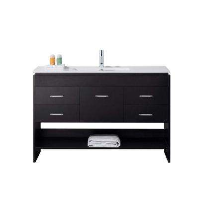 Gloria 48 in. W Bath Vanity in Espresso with Ceramic Vanity Top in Slim White Ceramic with Square Basin and Faucet