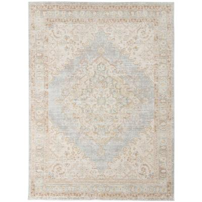 AMER RUGS Century Gray 5.0 ft. x 7.0 ft. Classic Polyester Area Rug