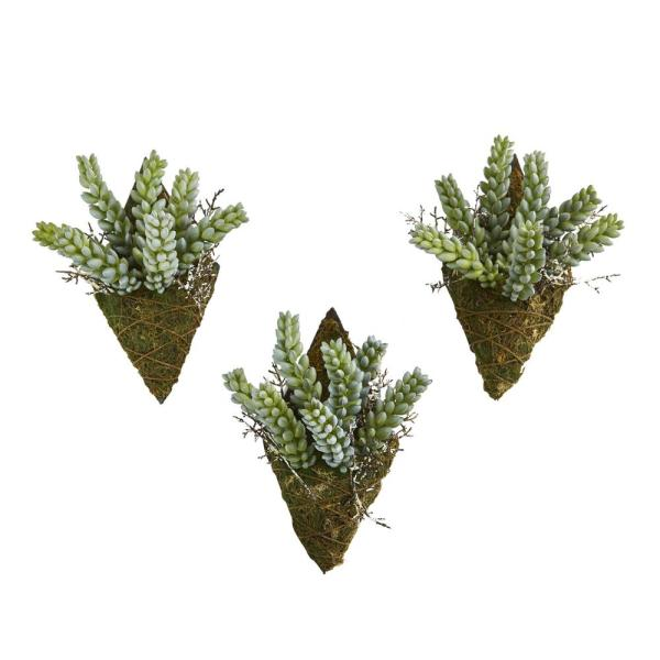 8 in. Sedum Succulent Artificial Wall Decor Plant (Set of 3)