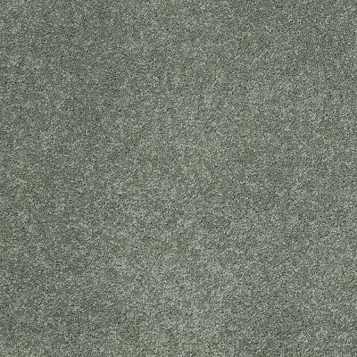 Coral Reef I - Color Breezy Sage Texture 12 ft. Carpet