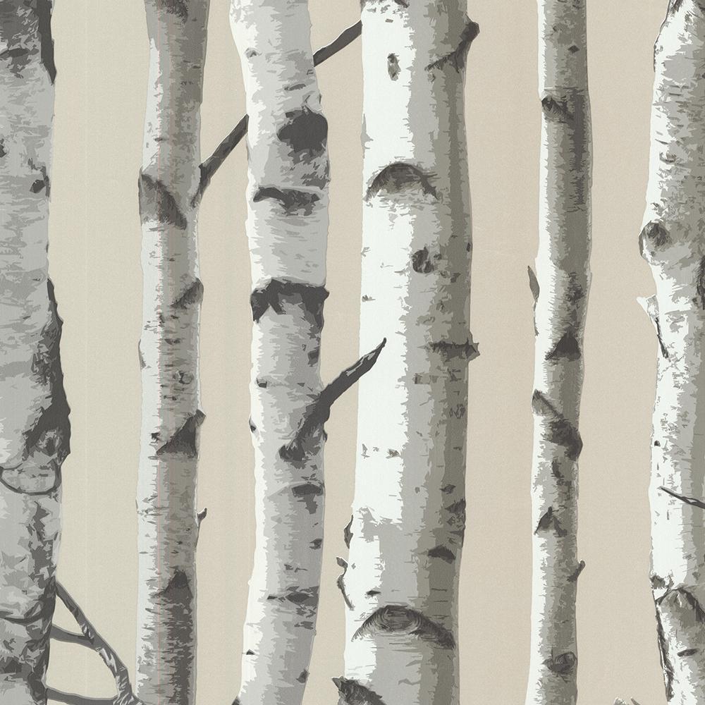 Brewster 56.4 sq. ft. Irvin Grey Birch Tree Wallpaper