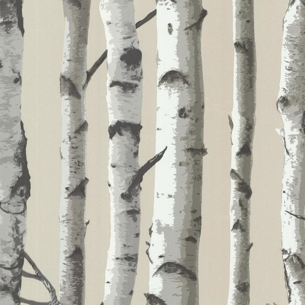Brewster 8 in. x 10 in. Irvin Grey Birch Tree Wallpaper