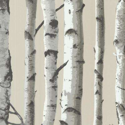 Irvin Grey Birch Tree Grey Wallpaper Sample