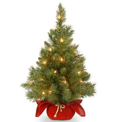 24 in. Majestic Fir Tree with Battery Operated Warm White LED Lights