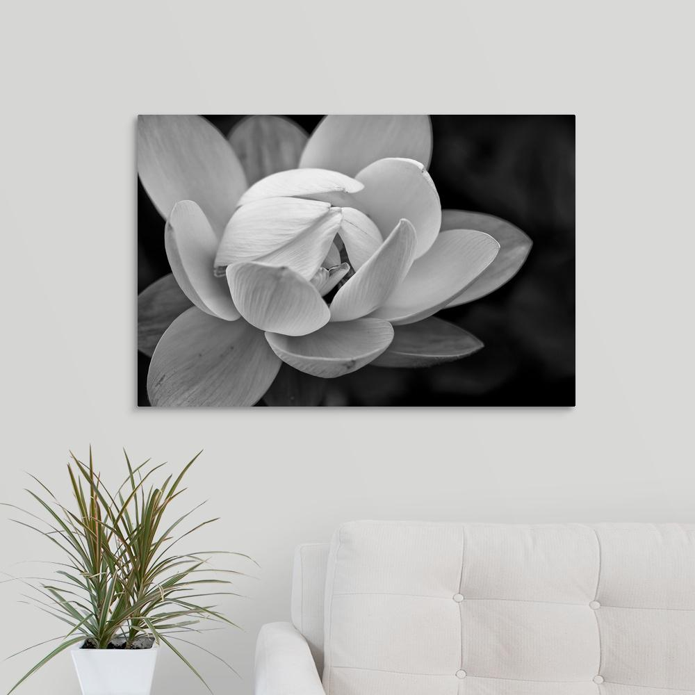 Black And White Flower By Dream On Photography Canvas Wall Art