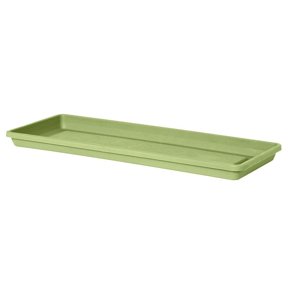 null 24 in. x 4.31 in. Lotus Green Plastic Window Box Tray (Case of 10)