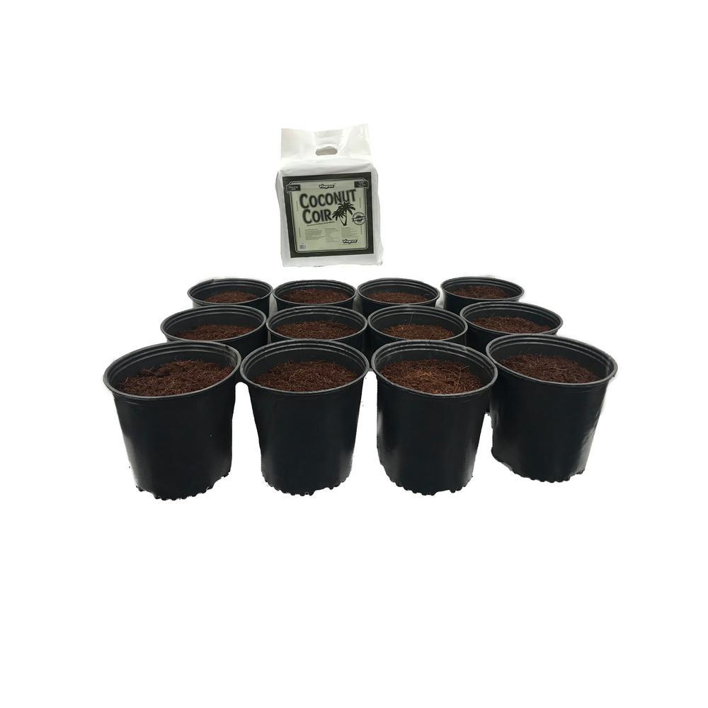 Viagrow Viagrow 2 Gal. Plastic Nursery Pots 7.57 l with Coconut Coir Growing Media (12-Pack), Black