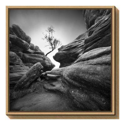"""Struggle"" by Sainty Framed Canvas Wall Art"