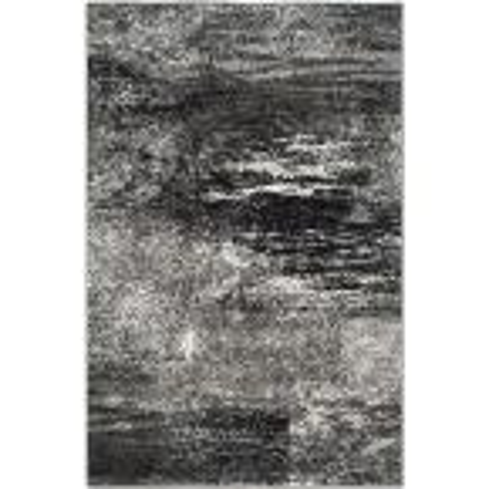 Adirondack Silver/Black 6 ft. x 9 ft. Area Rug