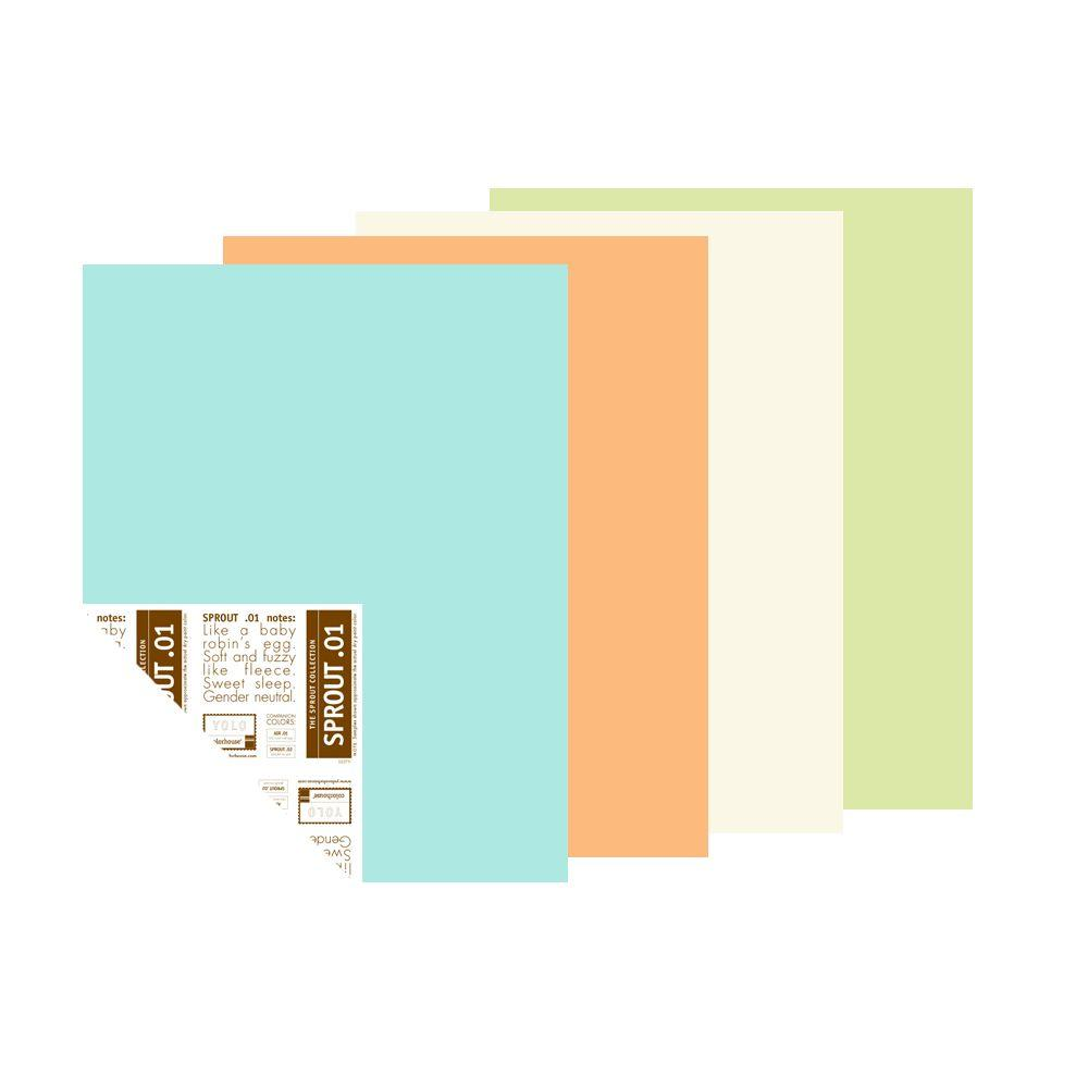 YOLO Colorhouse The Sprout Palette 12 in. x 16 in. Pre-Painted Big Chip Sample (4-Pack)-DISCONTINUED