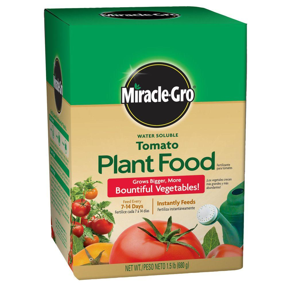 Miracle gro water soluble 1 5 lb tomato plant food for Vegetable garden fertilizer