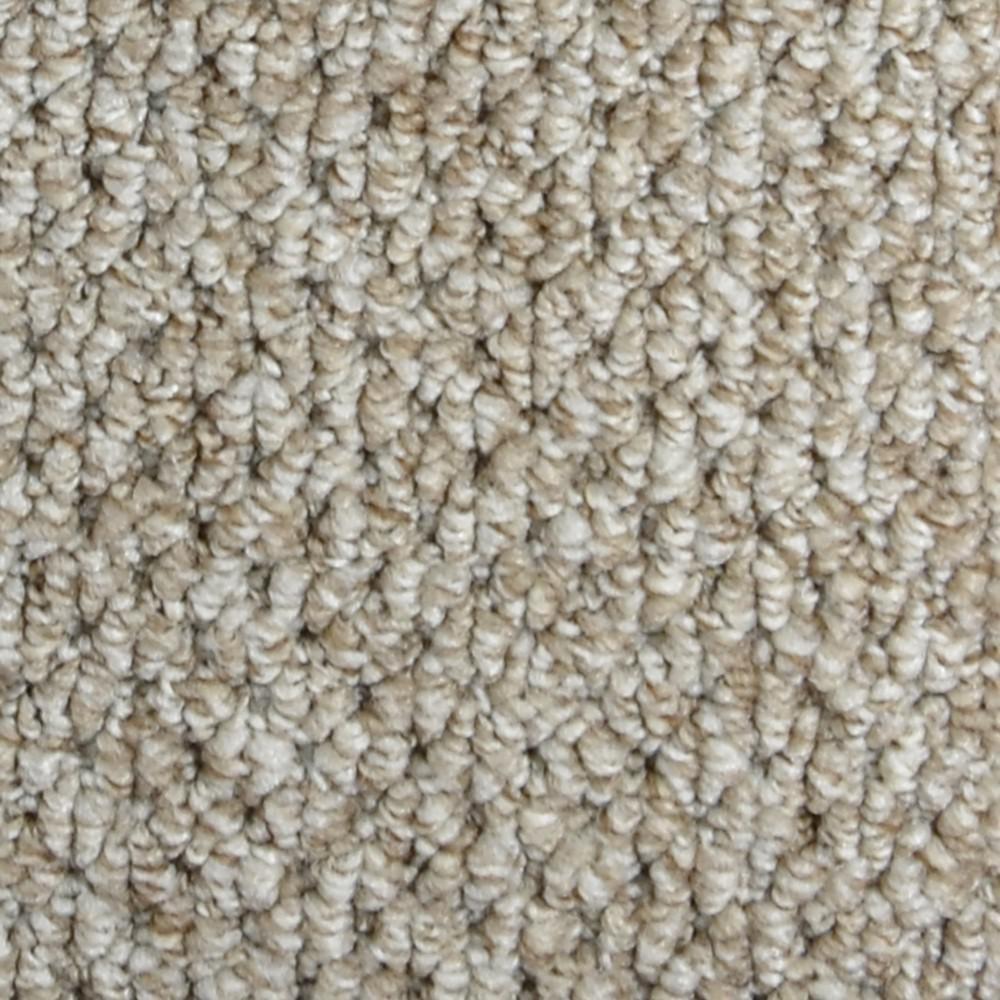 Trafficmaster Carpet Sample Follow Up Color Lansing
