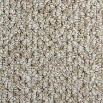 Carpet Sample - Follow Up - Color Lansing Loop 8 in. x 8 in.