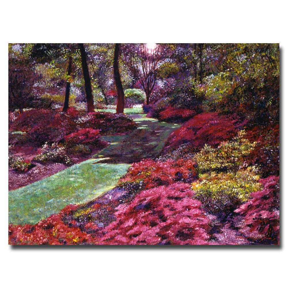 Trademark Fine Art 26 in. x 32 in. Azalea Park Canvas Art