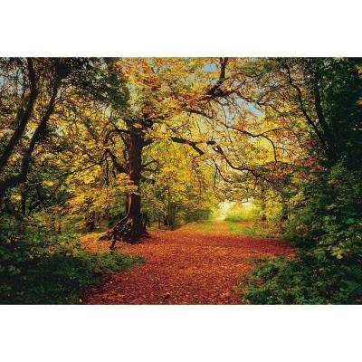 106 in. x 153 in. Autumn Forest Wall Mural