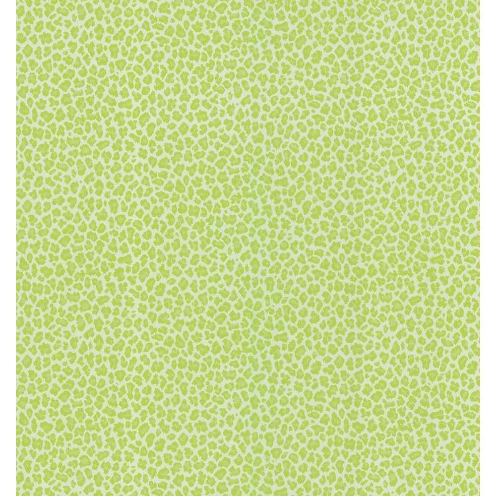 National Geographic 8 in. W x 10 in. H Leopard Skin Wallpaper Sample