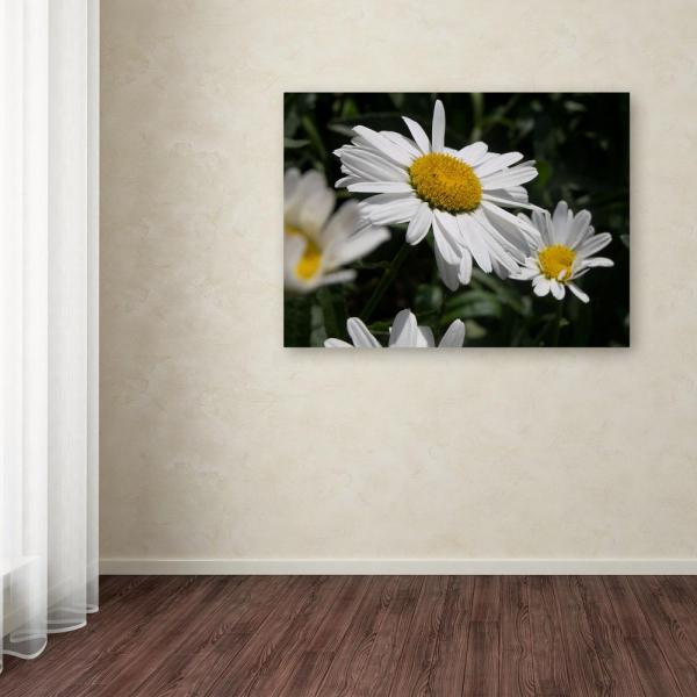 Trademark Fine Art 32 in. x 24 in. ''Dominating Beauty'' by
