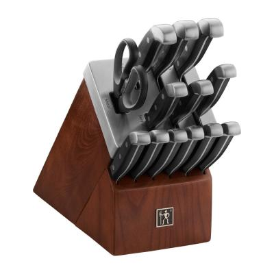 Solution 18-Piece Stainless Steel Knife Set with Block