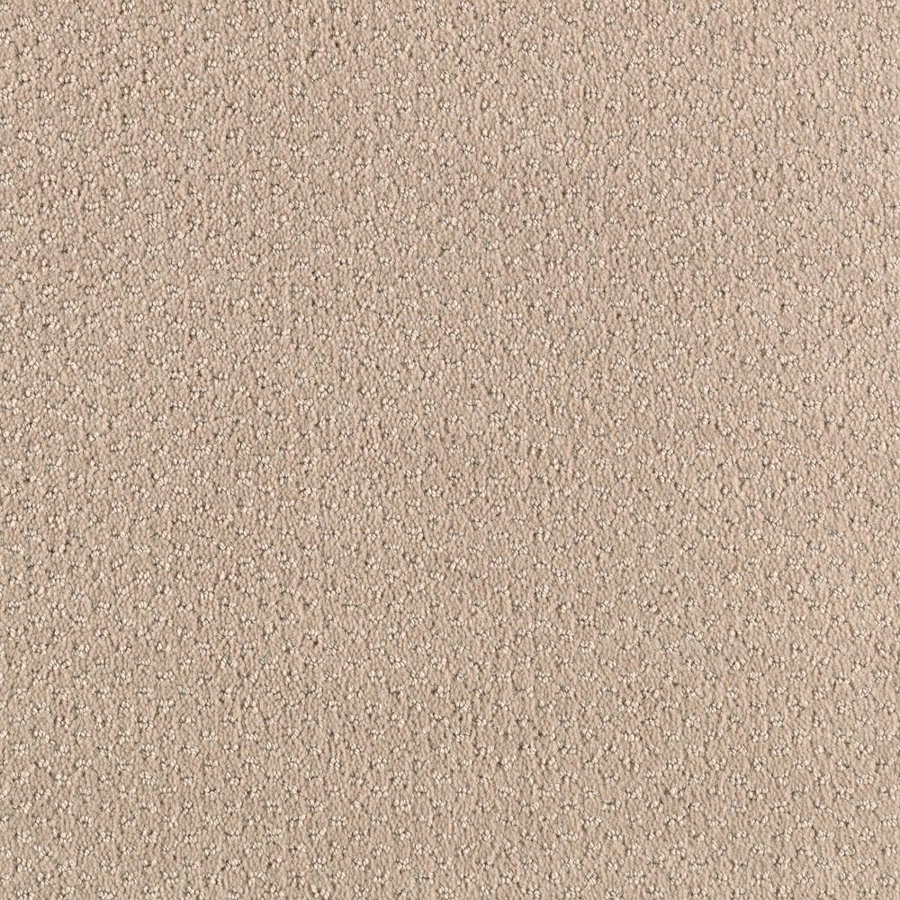 Home Decorators Collection Shoot Out Color Sugar Cookie Pattern 12 Ft Carpet 0343d 21 12