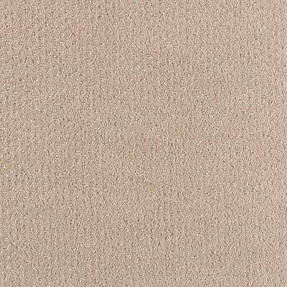 Shoot Out - Color Sugar Cookie Pattern 12 ft. Carpet