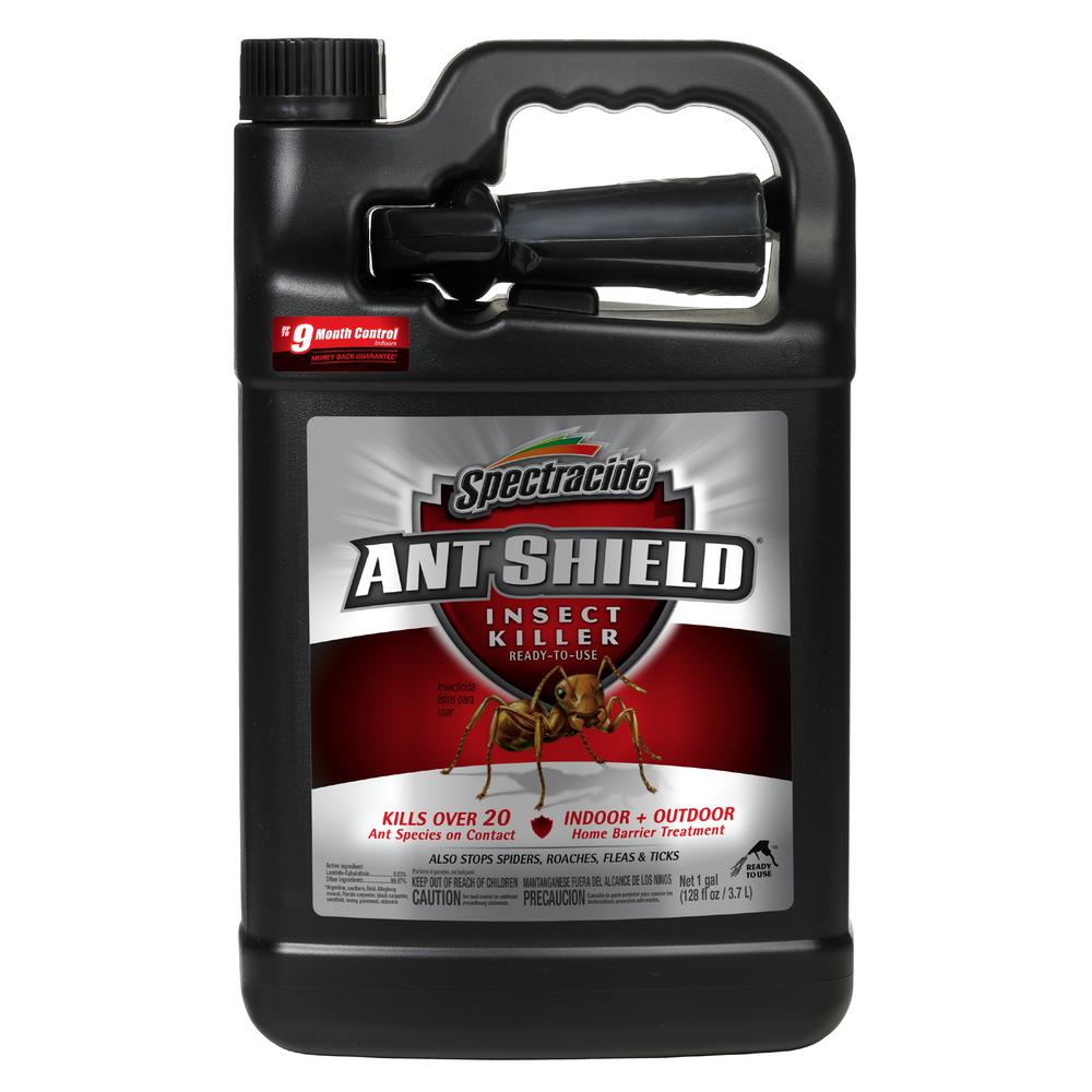 Spectracide Ant Shield 1 gal  Ready-to-Use Insect Killer