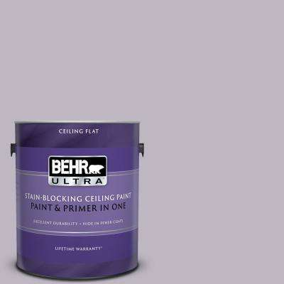 1 gal. #PPU16-09 Aster Ceiling Flat Interior Paint and Primer in One