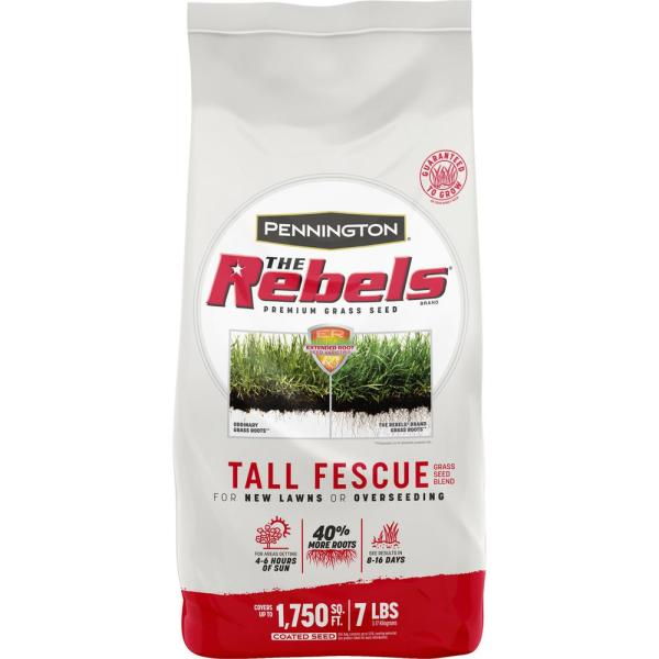 The Rebels 7 lbs. Tall Fescue Grass Seed Blend