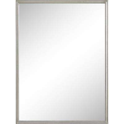 Cosgrove 48 In X 36 Framed Wall Mirror