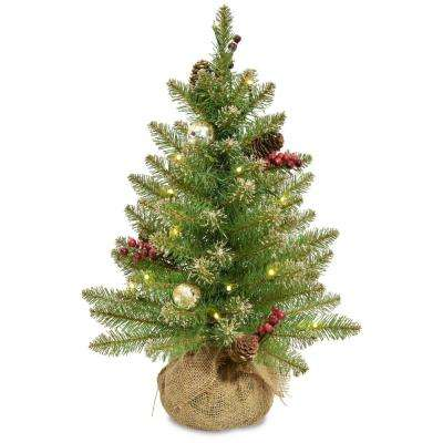 2 ft. Glittery Gold Dunhill Fir Artificial Christmas Tree with Battery Operated LED Lights