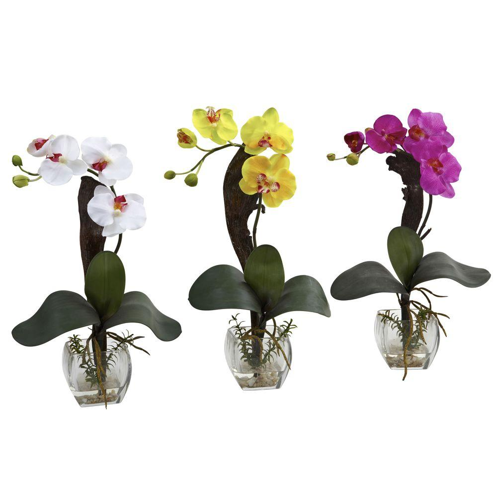 Nearly natural mini phalaenopsis orchid arrangement set of 3 nearly natural mini phalaenopsis orchid arrangement set of 3 reviewsmspy