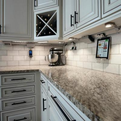 adorne Under Cabinet 1-Gang Control Box 1-Direct Wire with Paddle Dimmer