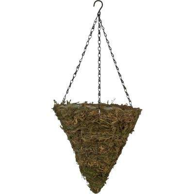 12 in. Fern Moss Cone Coconut Fiber Hanging Planter with Brown Chain
