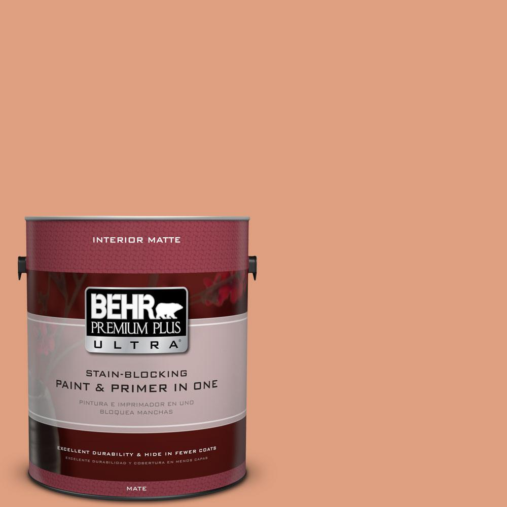 1 gal. #230D-4 Pecos Spice Matte Interior Paint and Primer in