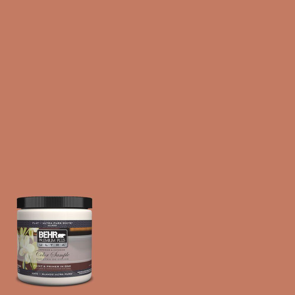8 oz. #220D-6 Miami Spice Interior/Exterior Paint Sample