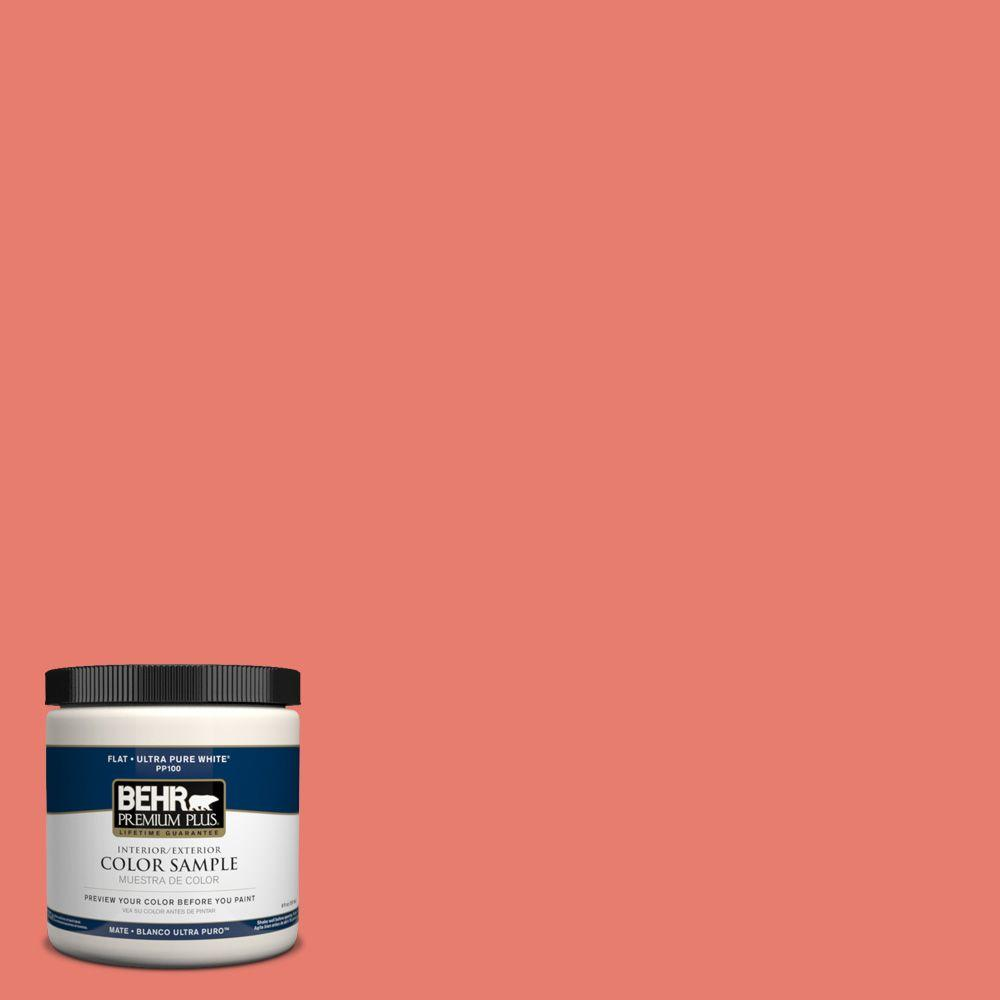 8 oz. #HDC-SM14-12 Cosmic Coral Interior/Exterior Paint Sample