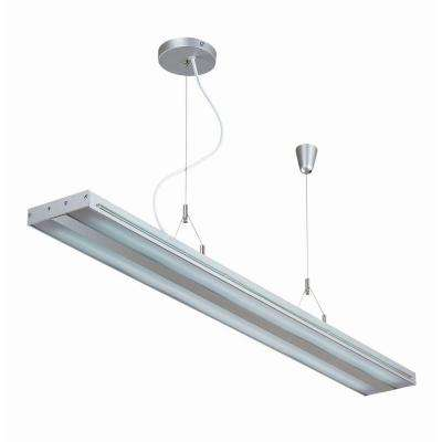 Designer Collection 2-Light Clear Ceiling Light with Acrylic Shade