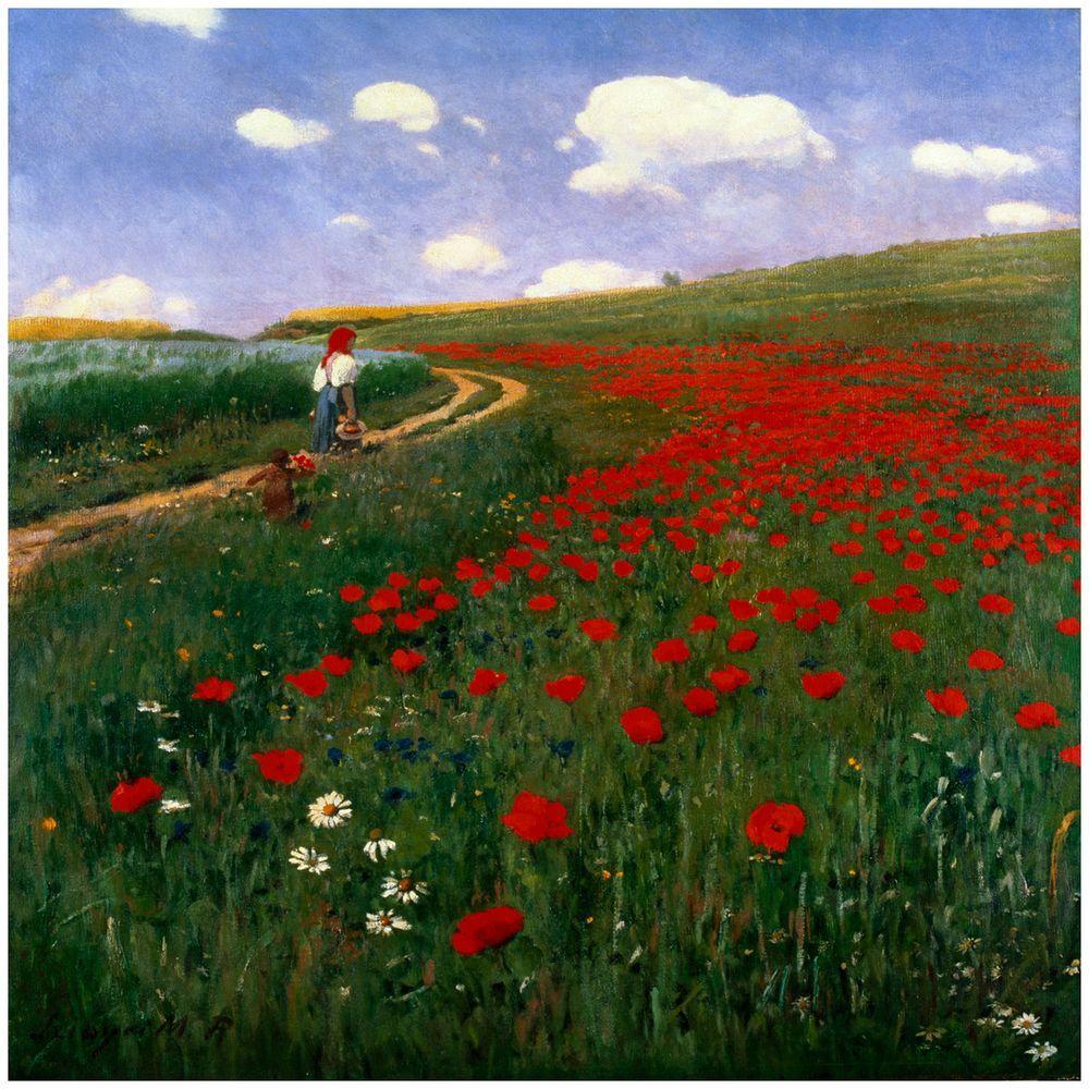 Trademark Fine Art 24 in. x 24 in. The Poppy Field Canvas Art
