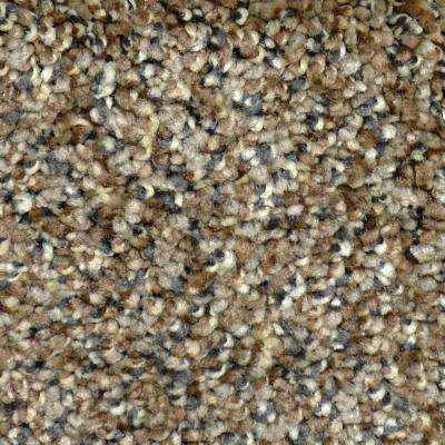 Carpet Sample - Graceful Style II - Color Clifton Texture 8 in. x 8 in.