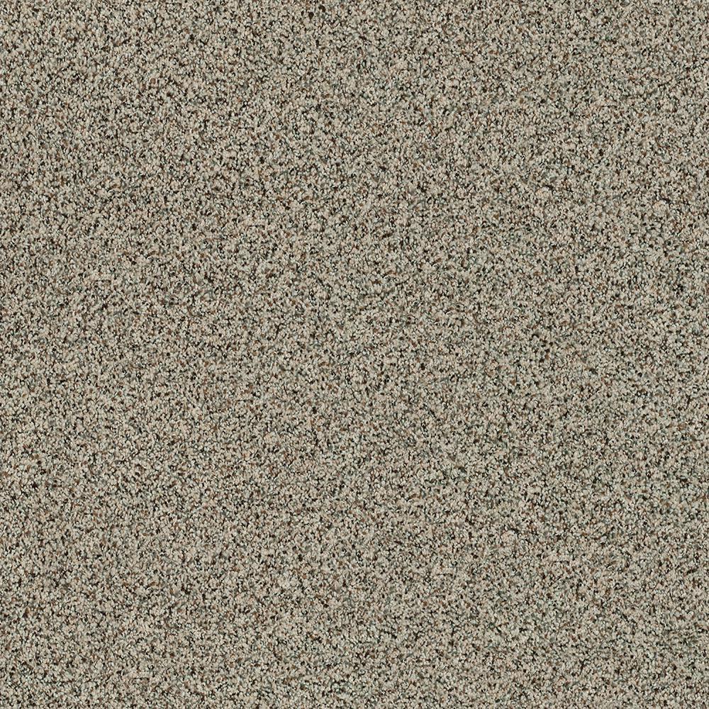 Carpet Sample - Madeline I - Color Bear Tracks Texture 8 in. x 8 in.