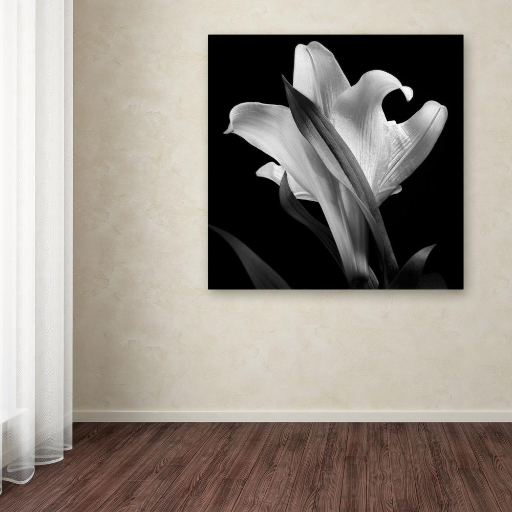 "14 in. x 14 in. ""Lily"" by Michael Harrison Printed Canvas"